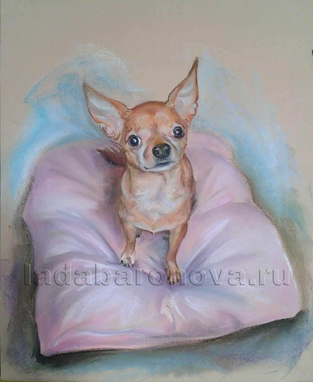 Портрет собачки «Любимый питомец»